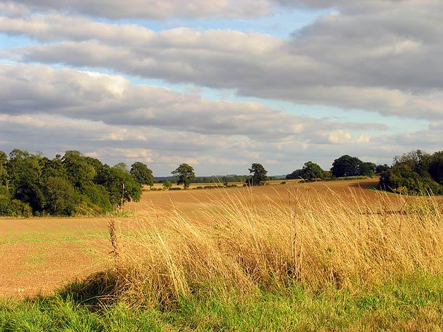 Farmland at Park House