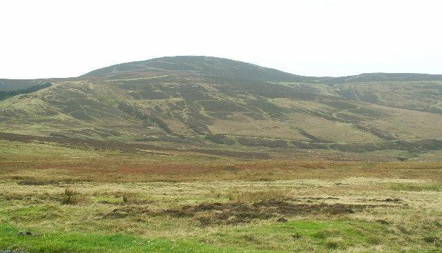 The Rheast south of Druidale