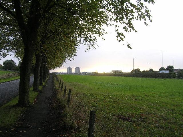 Avenue of trees leading to Arkleston Cemetery