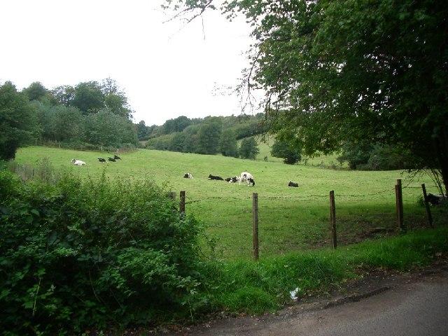 Fields west of Sheephouse Lane