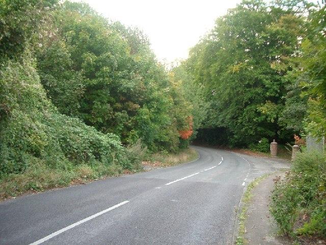 Ranmore Road
