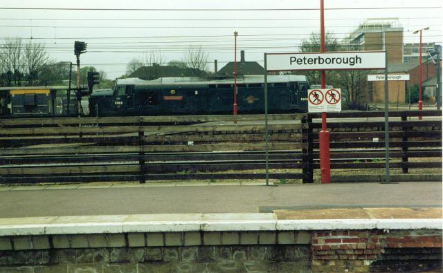 Peterborough.