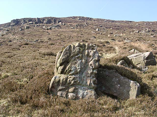 Weathered stone on moor