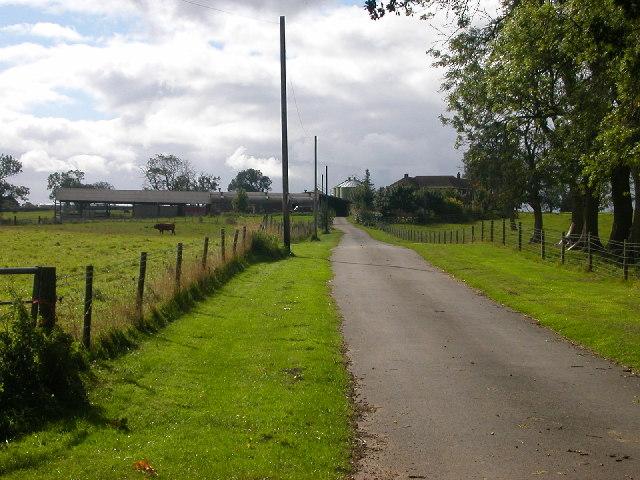 Yelvertoft - Flint Hill Farm