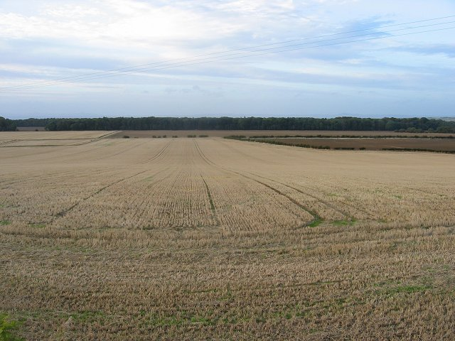 Harvested fields, Spittal.