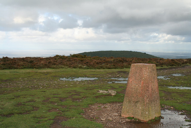 Crowcombe: trig point east of Hurley Beacon