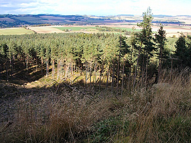 Forestry and fields