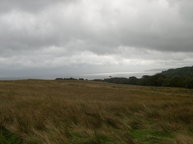 Heathland and site of dun, Saddell, Kintyre