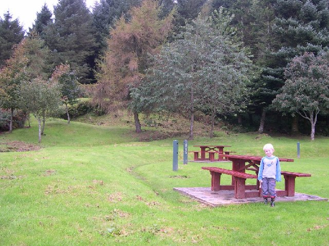 Picnic area and managed woodland.