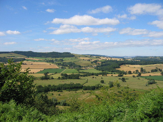 Herefordshire Trail leading to Wapley Hillfort
