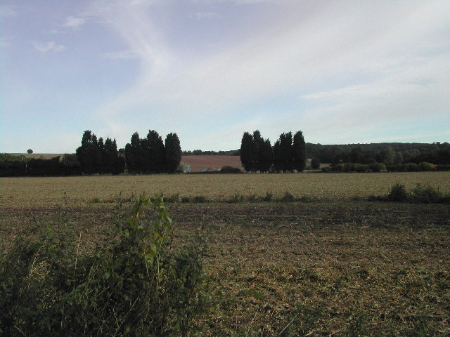 Willows Farm