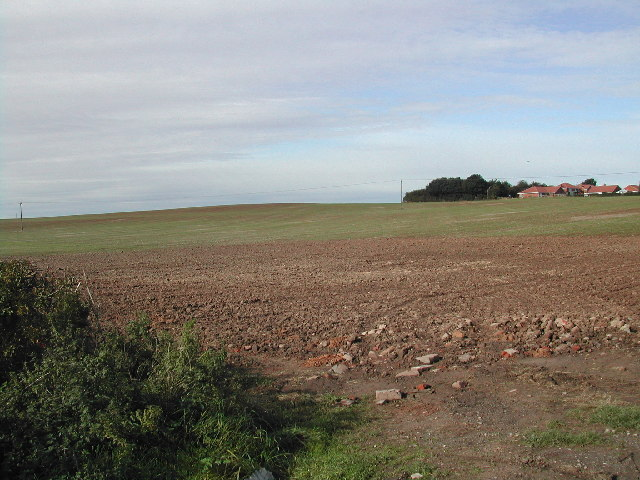 View West over Bilsthorpe Moor