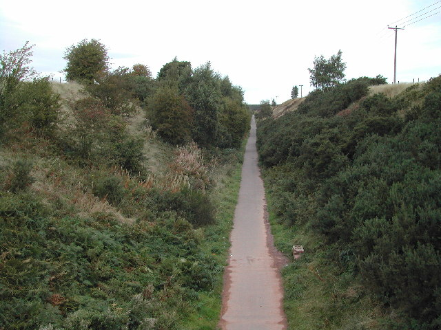 Cycleway at Rainworth