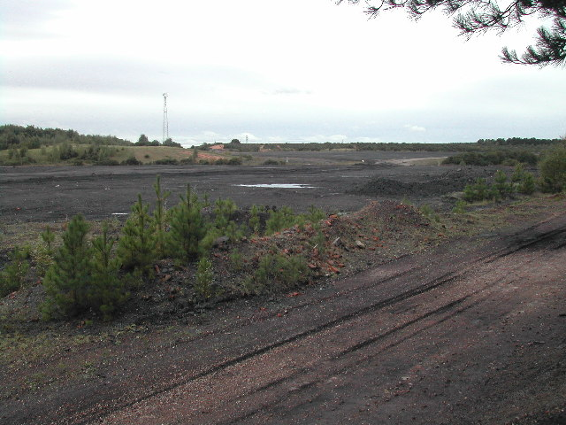 Coalpit Waste land