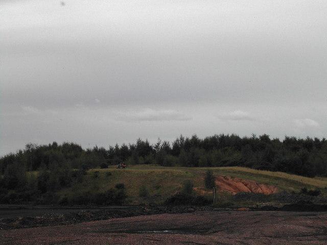 Wasteland and Woodland