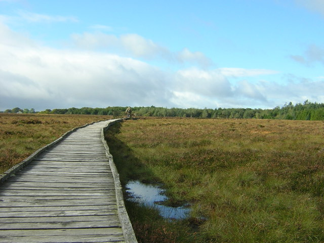 Langland Nature Reserve, East Kilbride