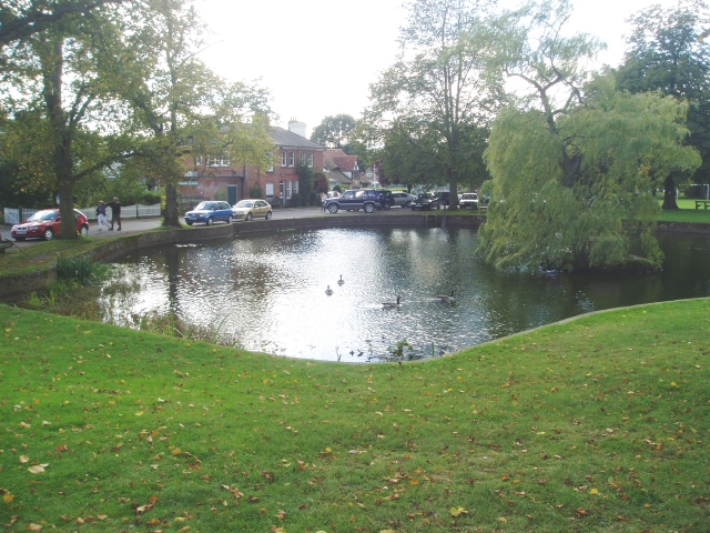 Village duck pond at Godstone Green