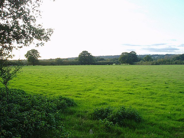 Fields near Goulds Farm