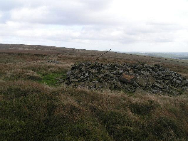 Ruined hut, Colborne