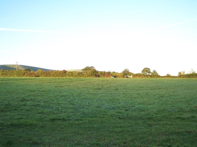 Paddocks near Fulking