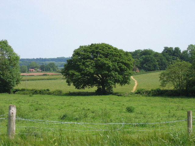 Footpath leading to Eyecote