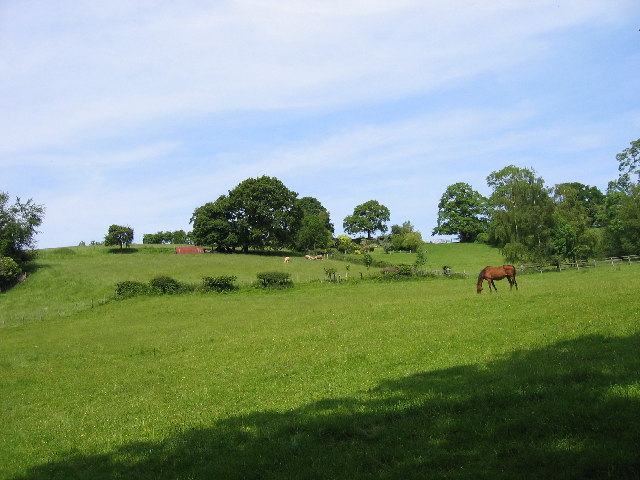 Fields on the path from Bircher Common to Yarpole