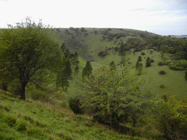 White Hill beauty spot