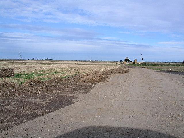 Eastoft Moor