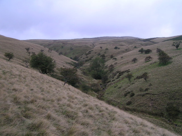 The Roych and Brown Knoll from the south