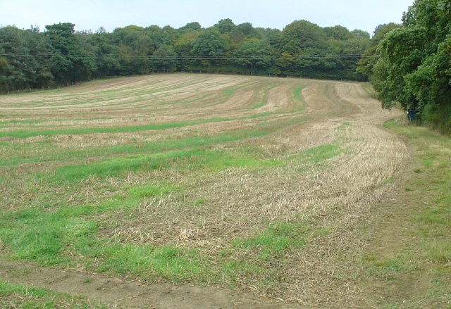 Field of wheat stubble on Hurst Hill, North of Horsham, West Sussex