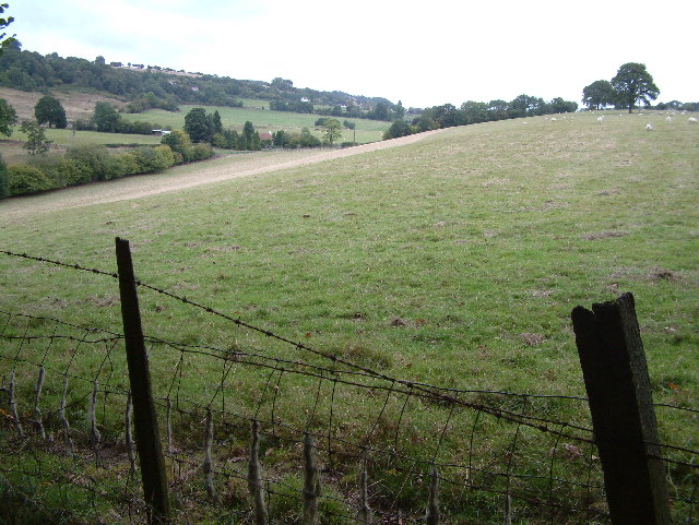 View from Wallsprings Wood, Forest of Dean