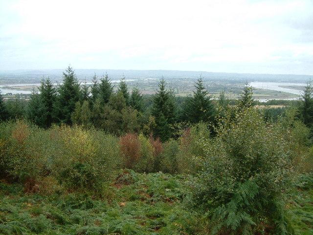 Viewpoint, Blaize Bailey