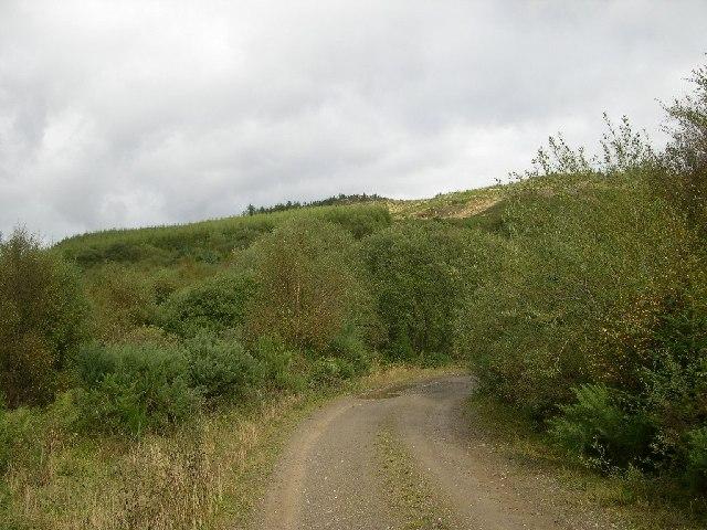 Kirnashie Hill, Carradale Forest, Kintyre.