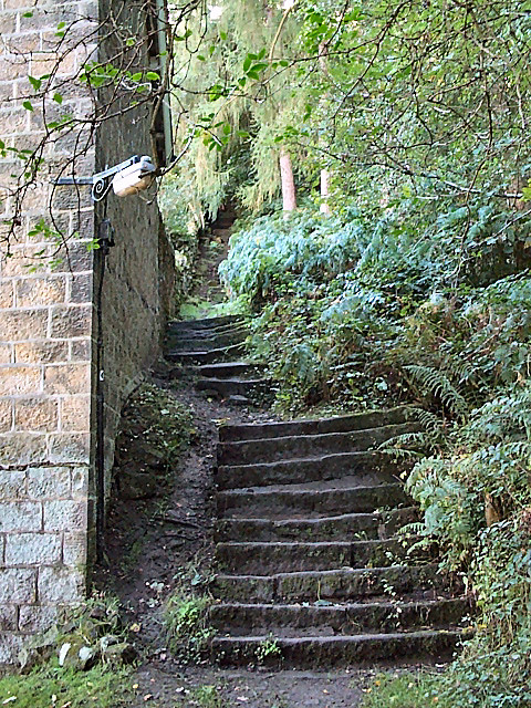 Steps at edge of Panorama Woods, Ilkley