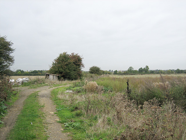 Fields near Honeybourne