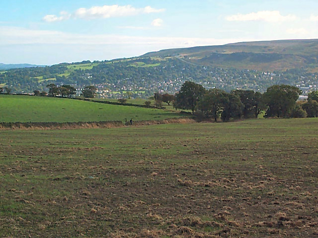 Fields near Middleton