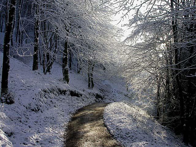 Macclesfield Forest near Ferriser