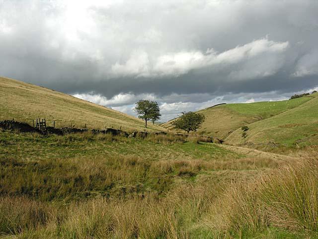 Redmoor Brow