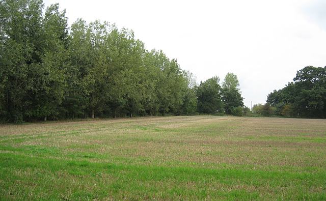 Field near Ailstone