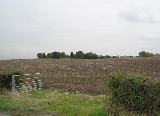 Nardeybush Hill