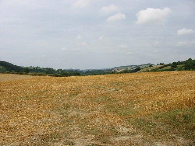 Field near Upper Lye