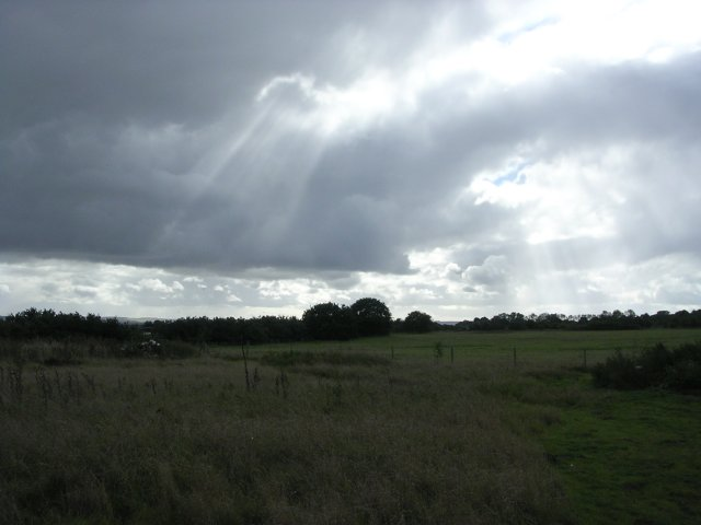 Fields near Cothill