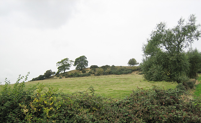 Meon Hill