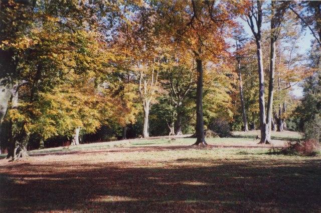 Aconbury Hill