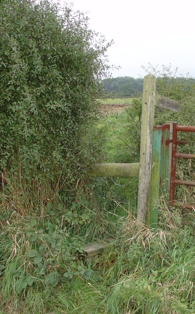 Stile leading to Public Footpath near Great Benhams Farm, Near Horsham, West Sussex