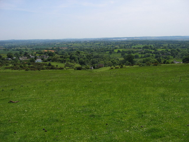 Bircher Common