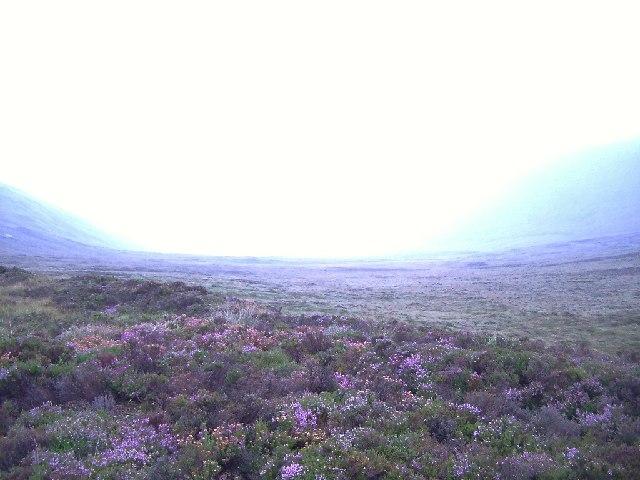 up the Trowie Glen, near the Dwarfie Stane, Hoy