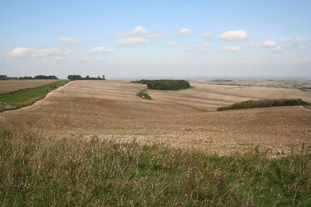 Field and gallops on Ridgeway