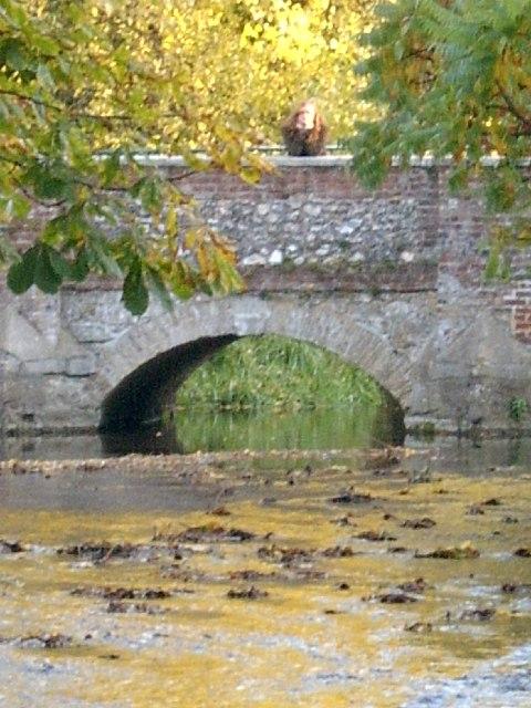 Darenth Bridge in Shoreham