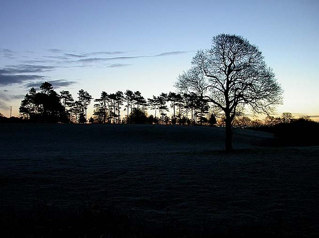 Dawn at the Whitegate Way